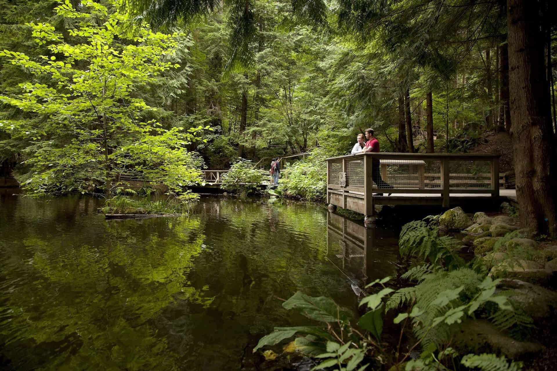Coming Attractions >> Capilano Suspension Bridge Park - WESTCOAST Sightseeing