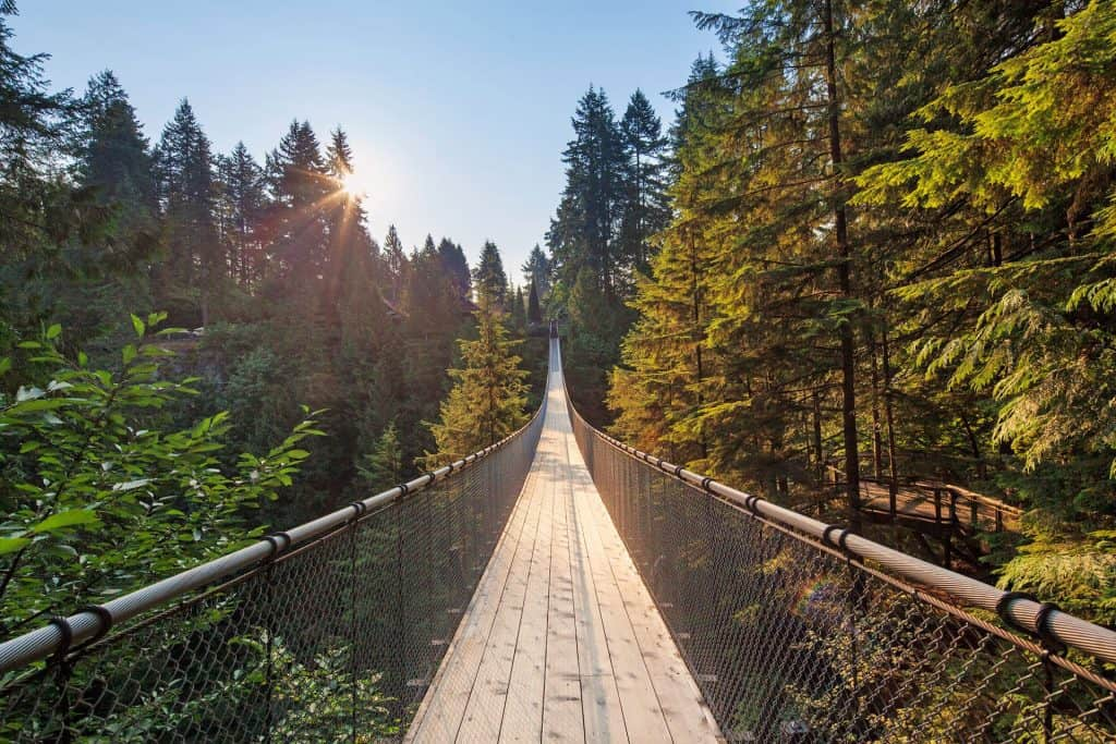 Capilano-Suspension-Bridge-with-Sunrise-hero