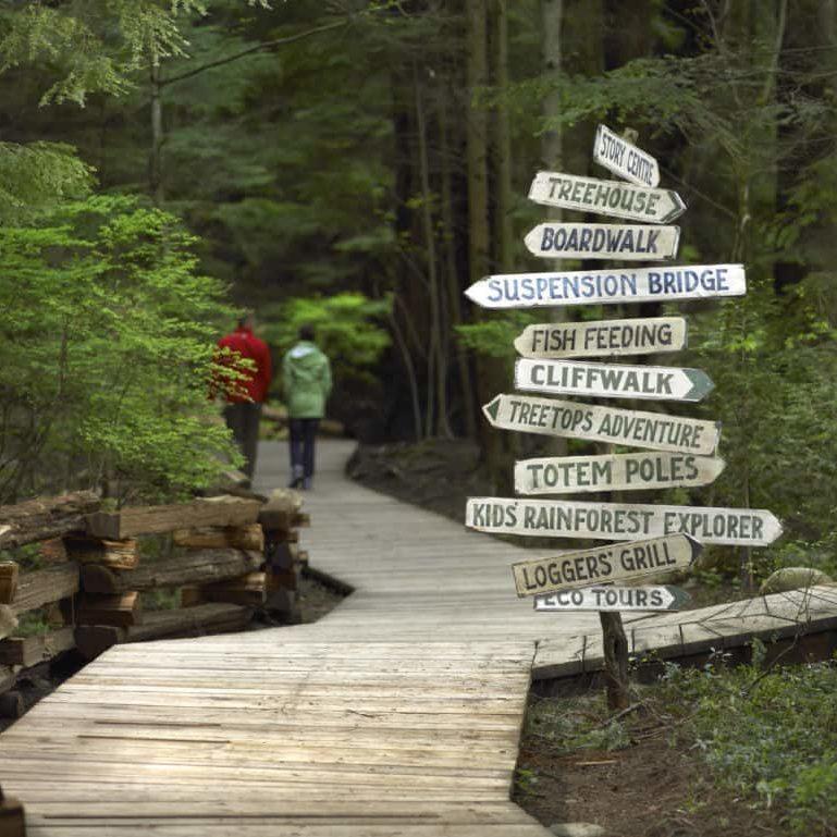 Vancouver + Capilano Suspension Bridge Park Tour Activities